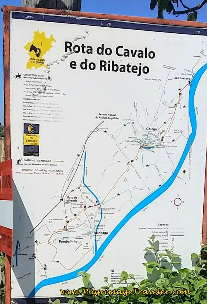 Horse Paths and Camino Paths in the Municipality of Golegã