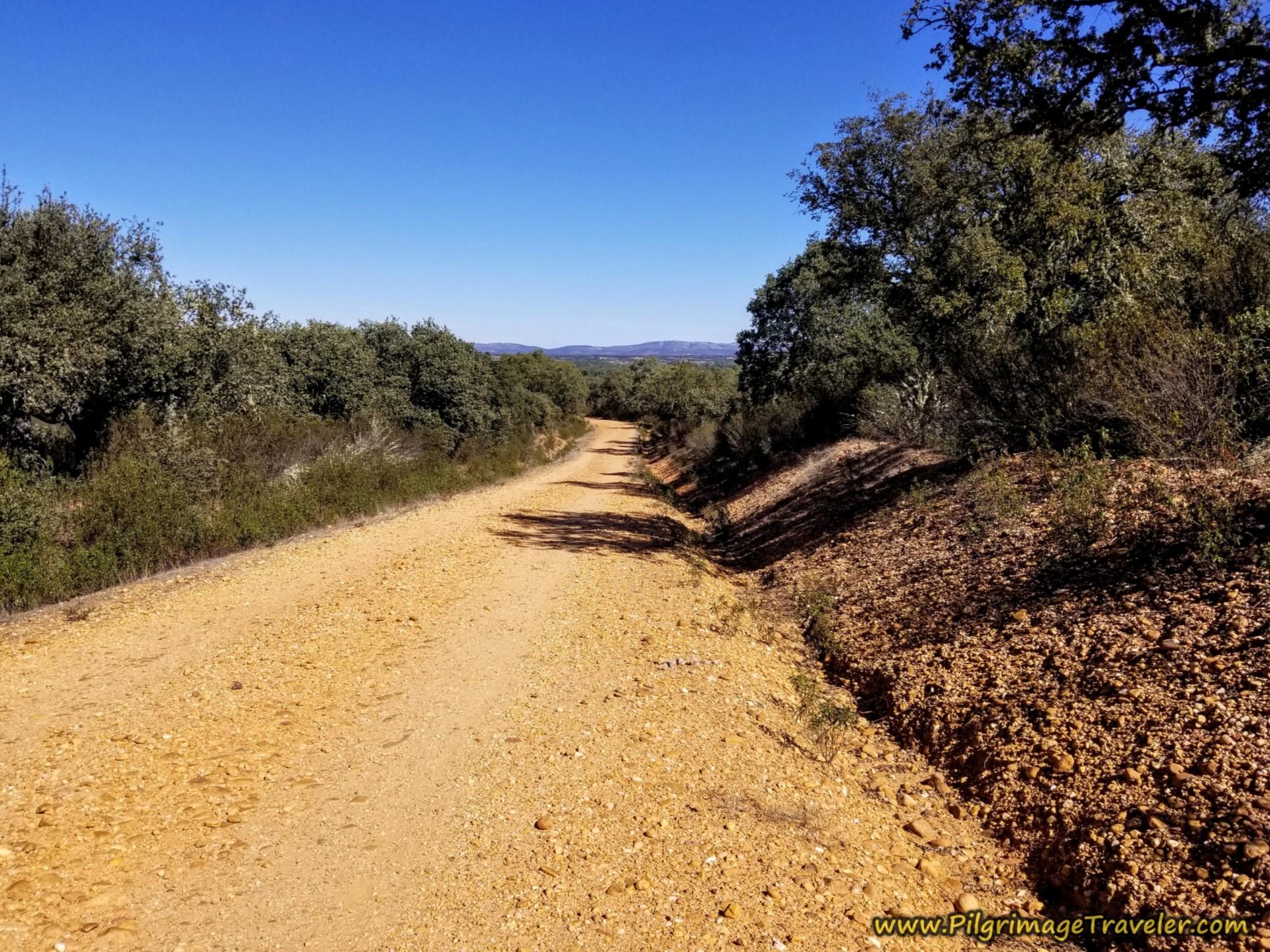 Downhill to Santa Croya de Tera Begins