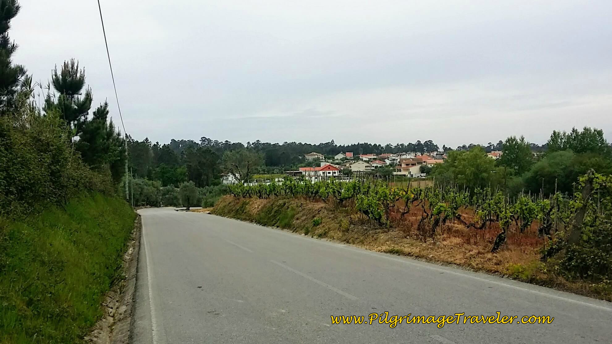 The EM616 Towards Lendlosa, Portugal on the Camino de Santiago