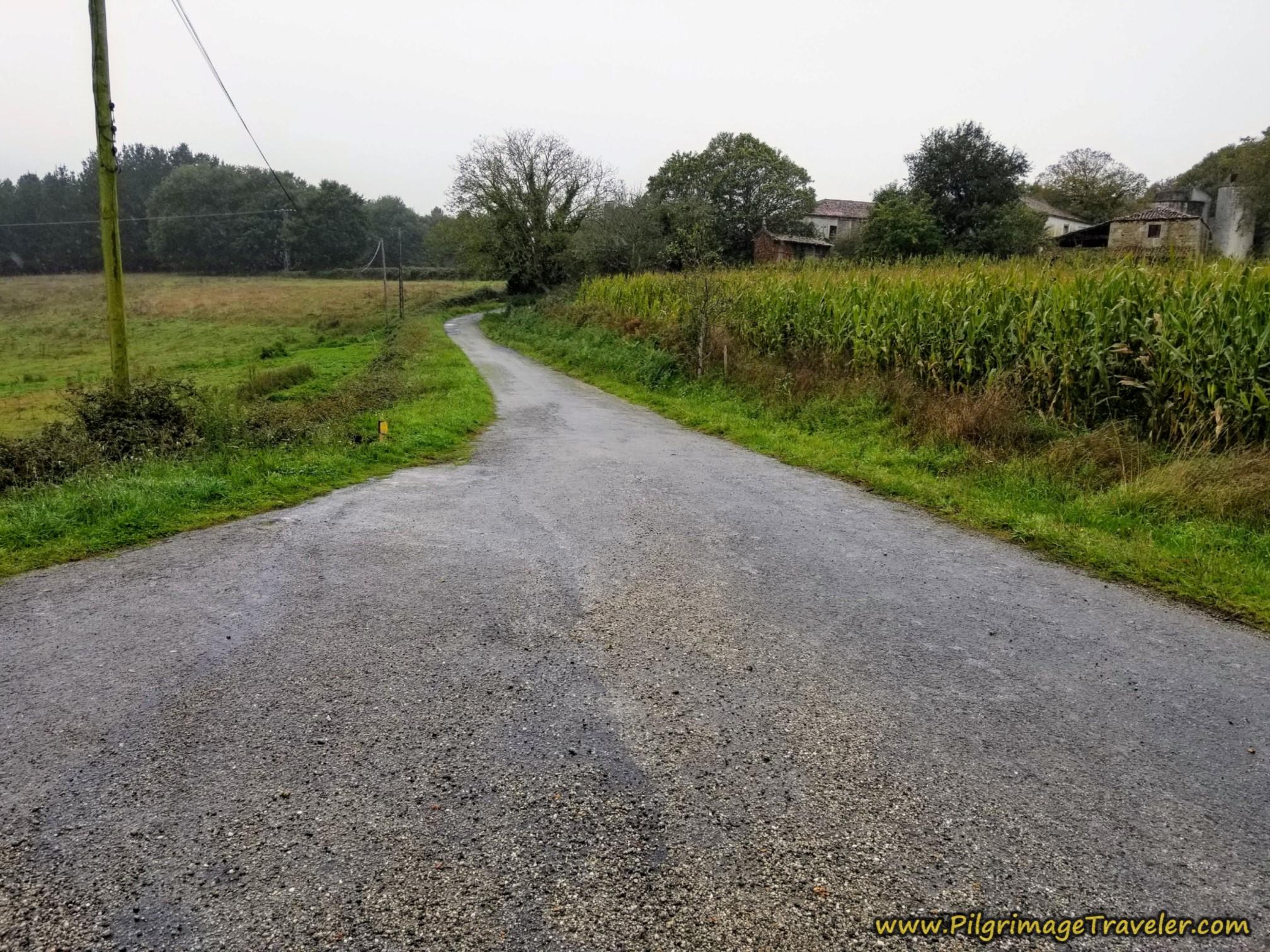 Left Turn Onto Tiny Lane