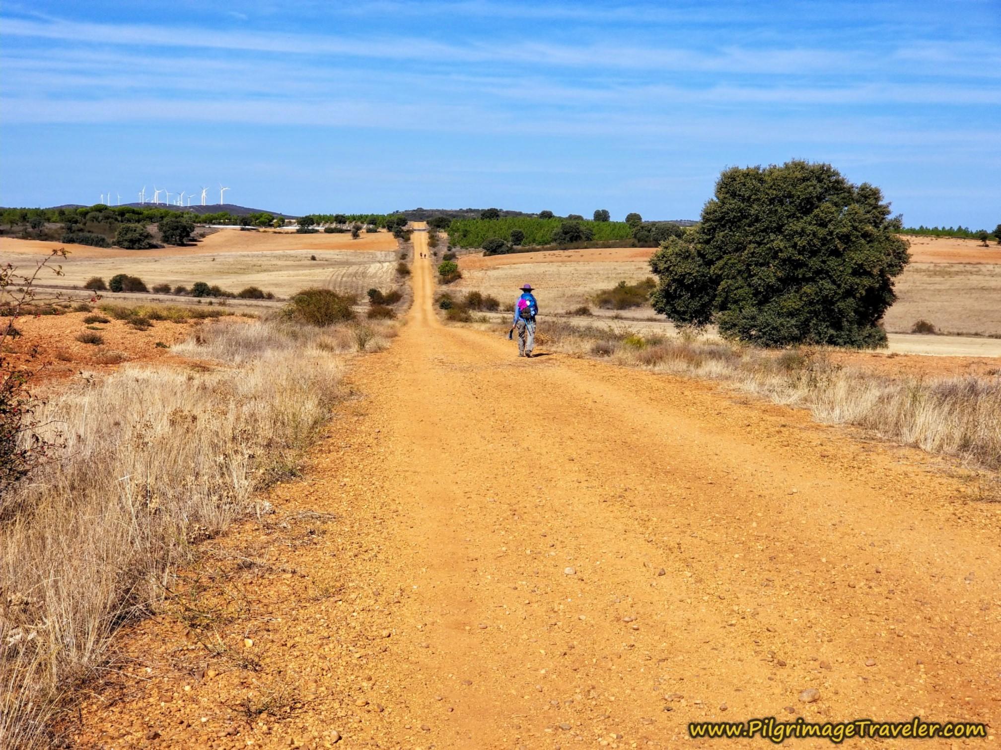 Nadine on Long Open Road on the Camino Sanabrés from Granja de Moreruela to Tábara