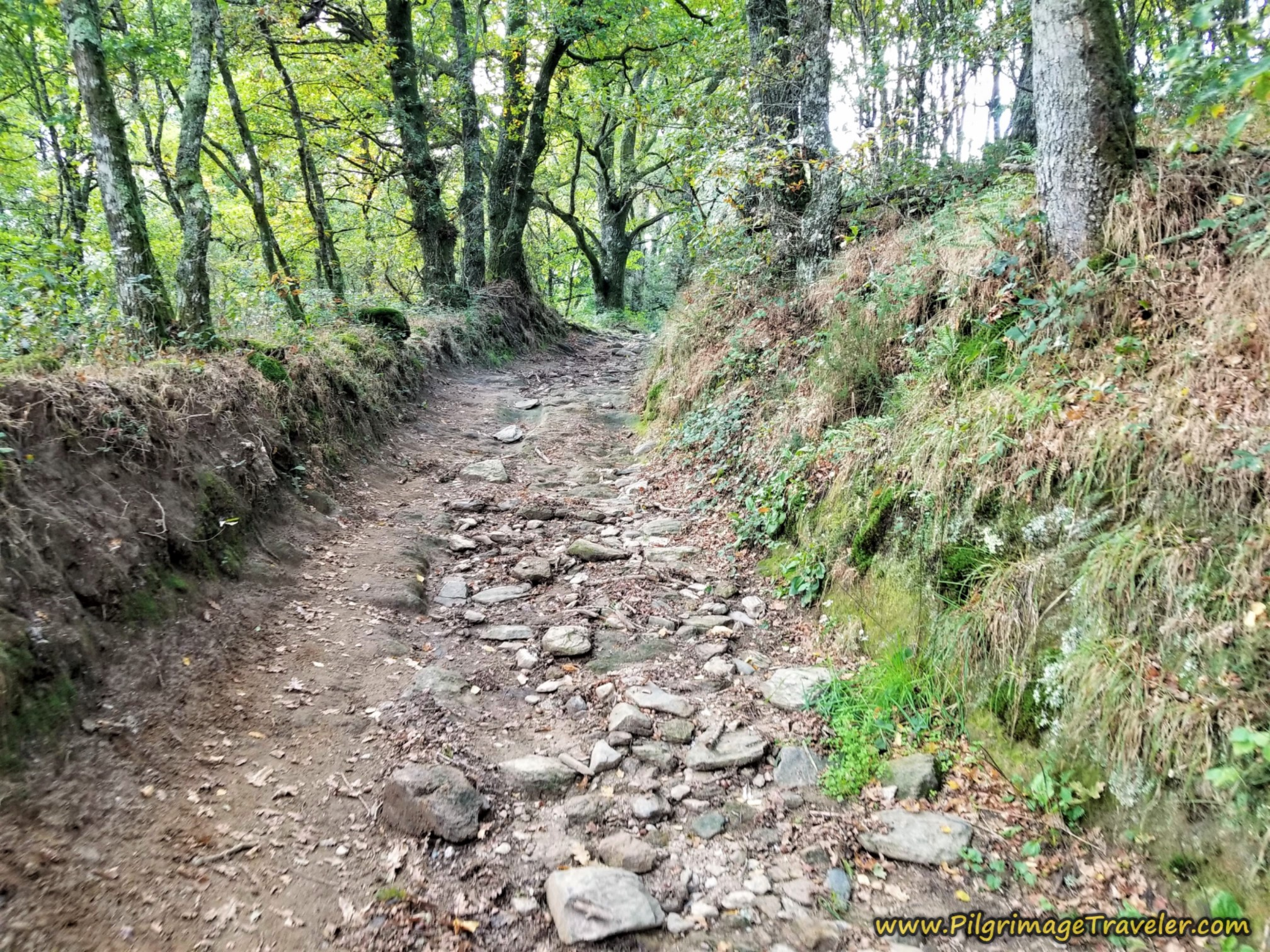 Another Uphill on a Roman Road