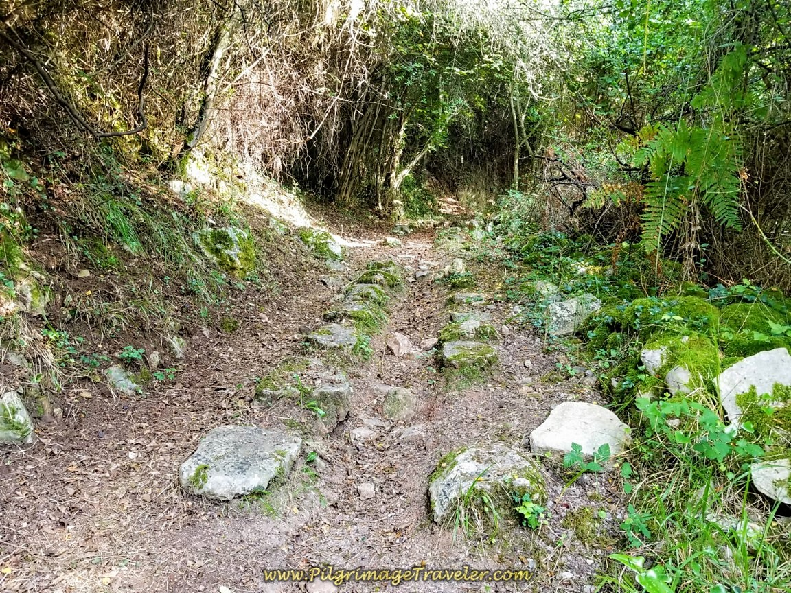 Vestiges of the Roman Road