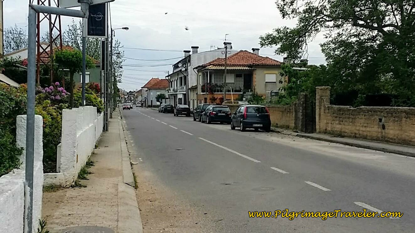 Entering Mourisca do Vouga