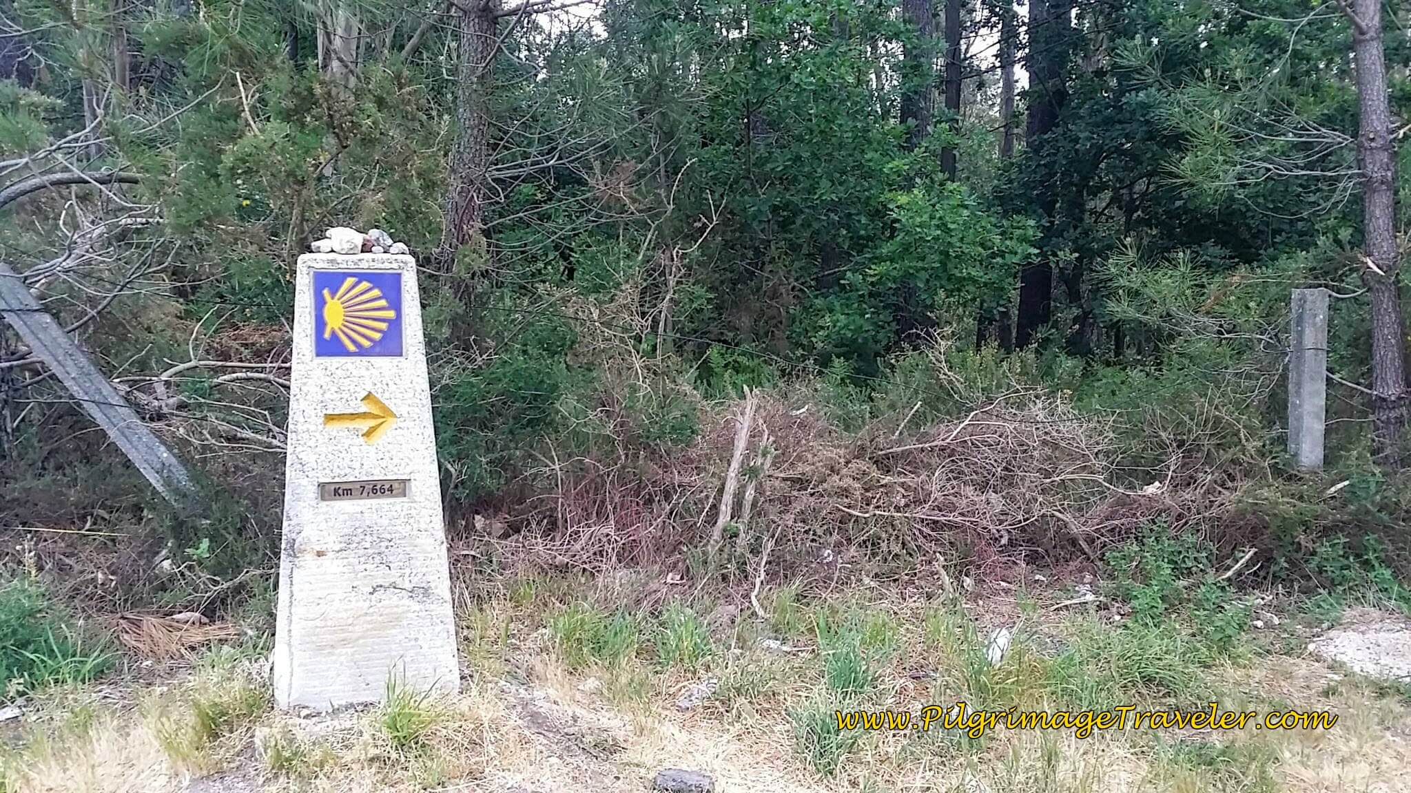 Surprising Path in the Middle of Milladoiro on day twenty-five of the Camino Portugués