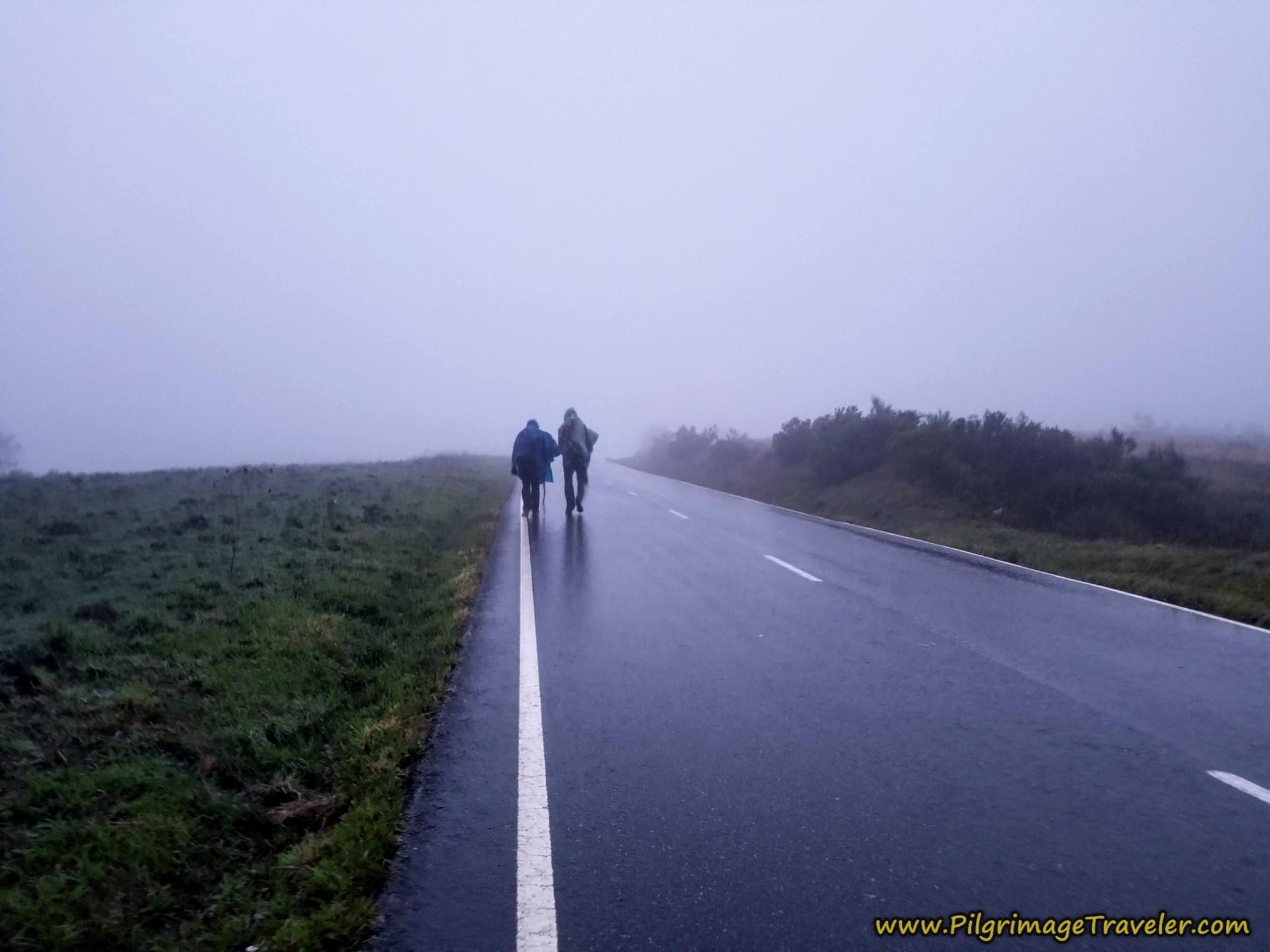 Paved Road Towards A Venda do Espiño