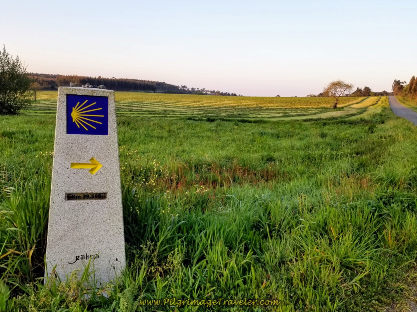 Straight On at 39.59 Kilometer Marker on day seven of the Camino Inglés
