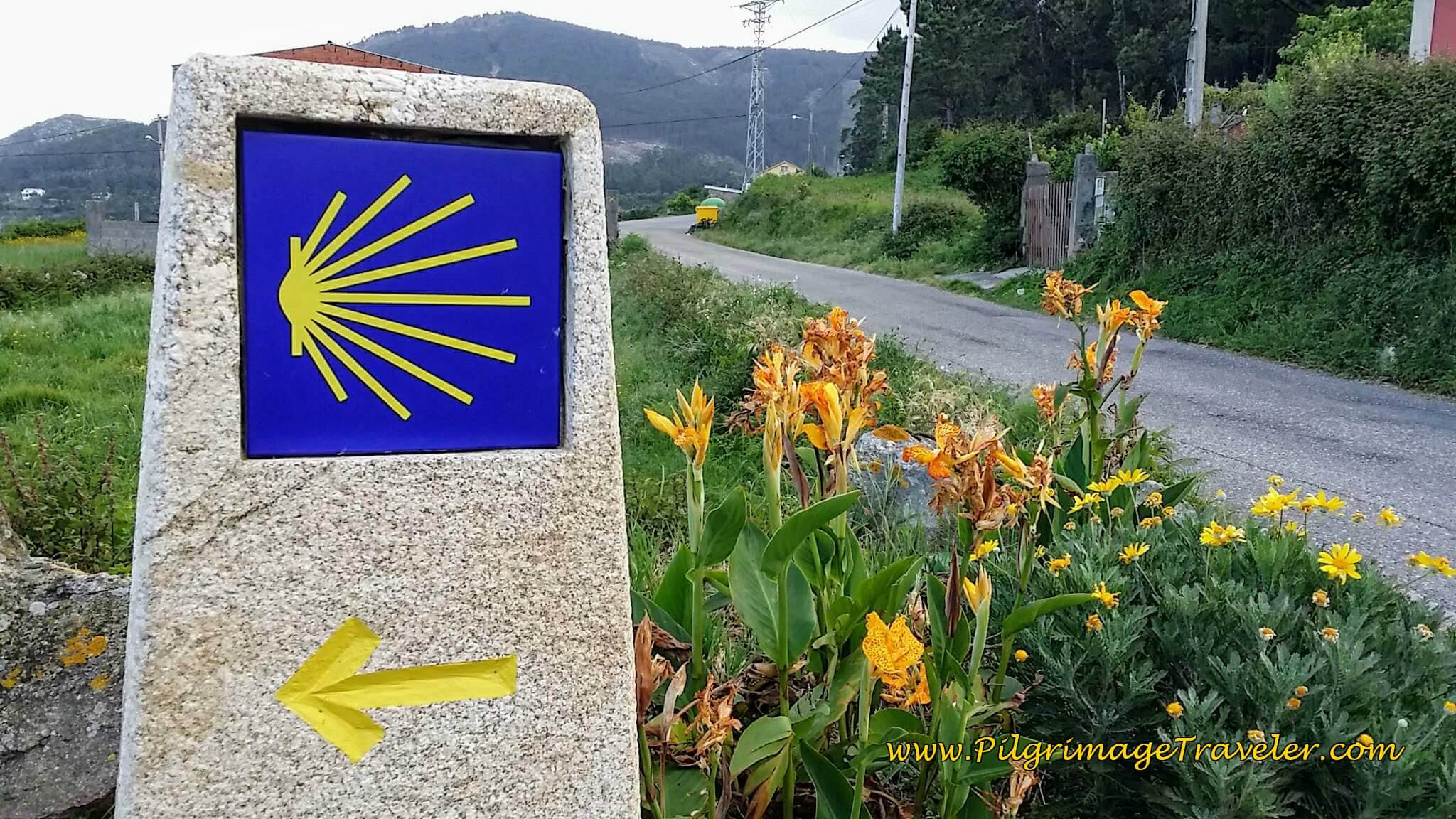 Turn Left Here ~ Flowers and Waymark on day twenty, Camino Portugués