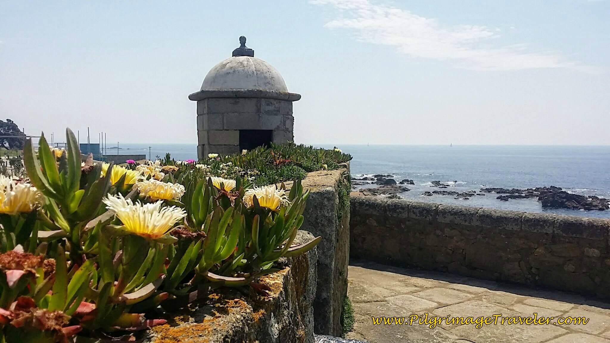Gorgeous Yellow Flower and Sentry House at the Castelo do Queijo in Porto, Portugal