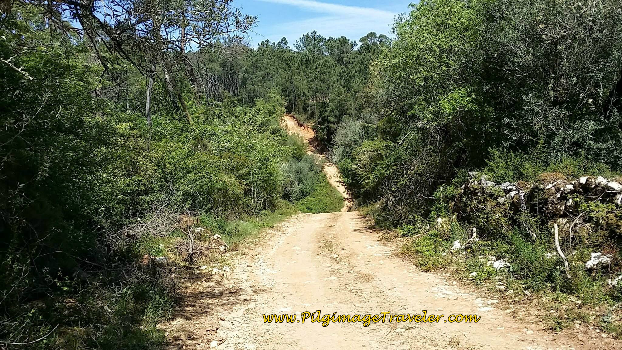 Little ups and downs on path on day seven of the Camino Portugués