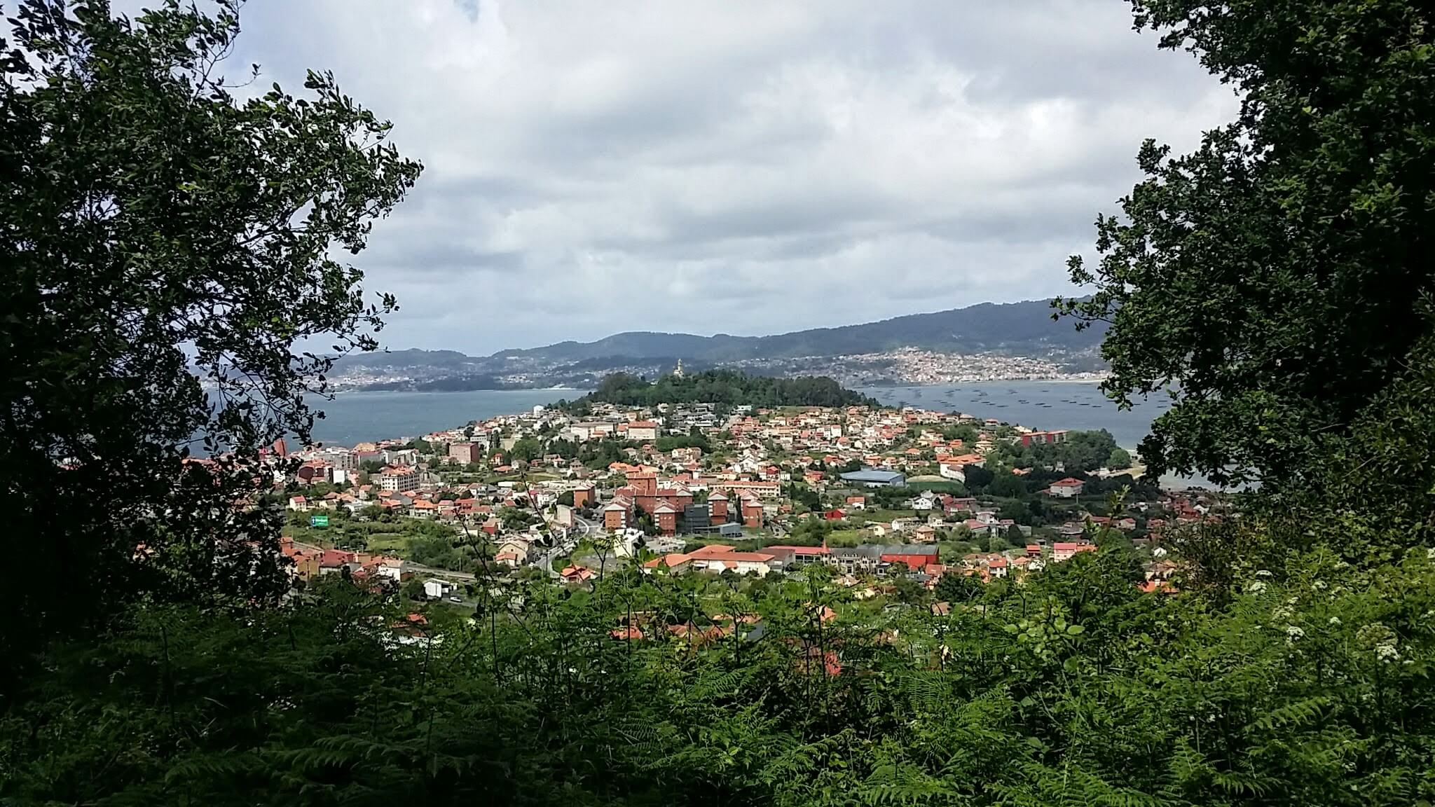 Glimpses of the Bay of the Ría de Vigo on day twenty-one of the Camino Portugués