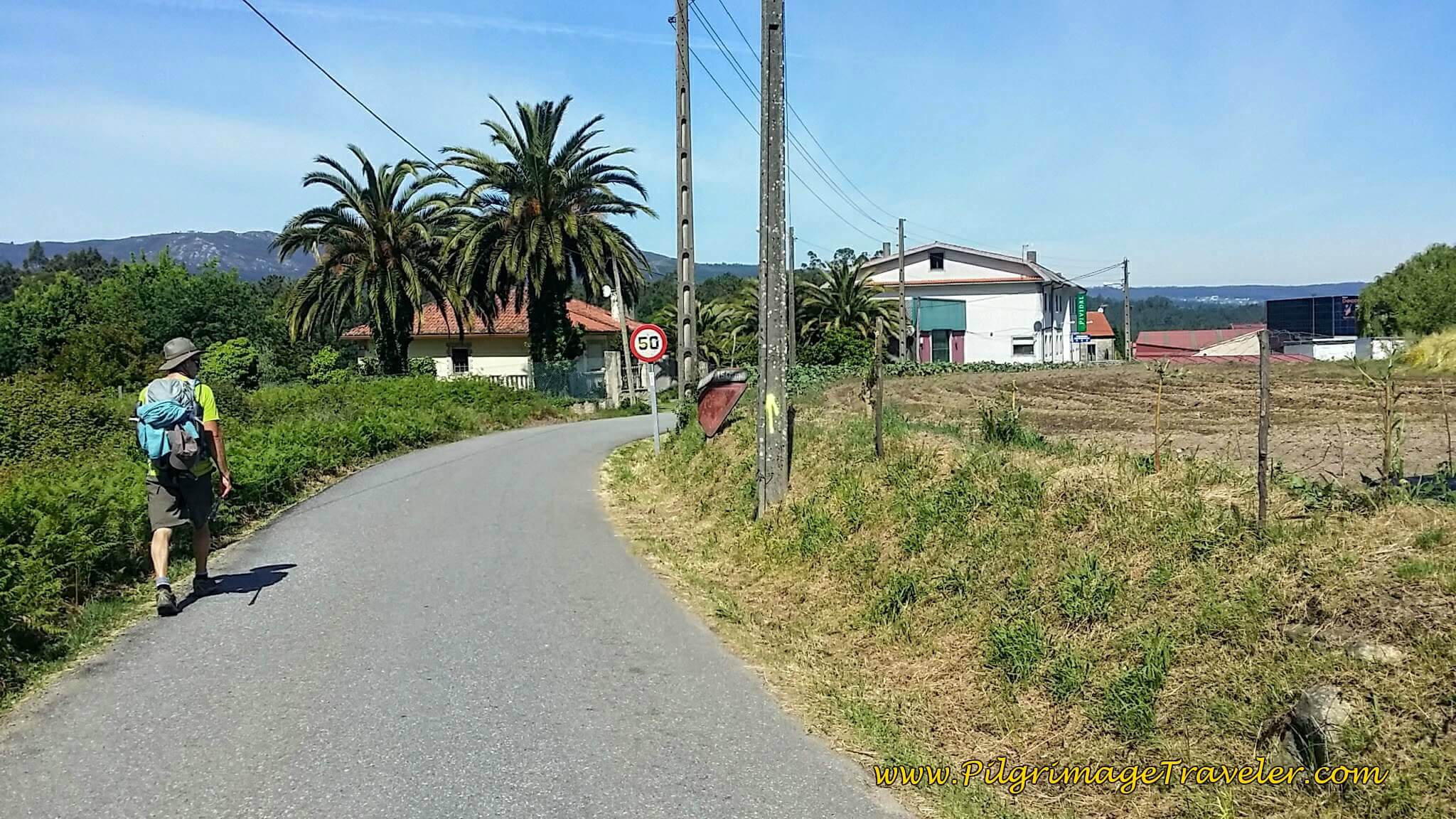 Towards the Juncture with the N-550 in Picaraña on Day Twenty-Four, Portuguese Camino