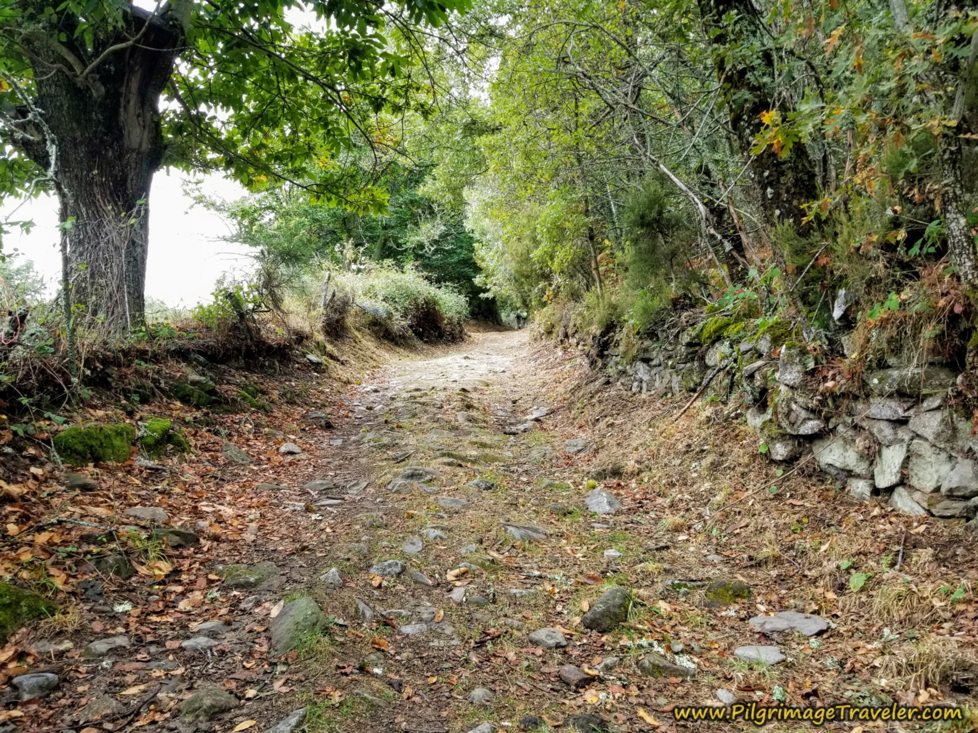 Remnants of Roman Road on the Camino Sanabrés from Lubián to A Gudiña
