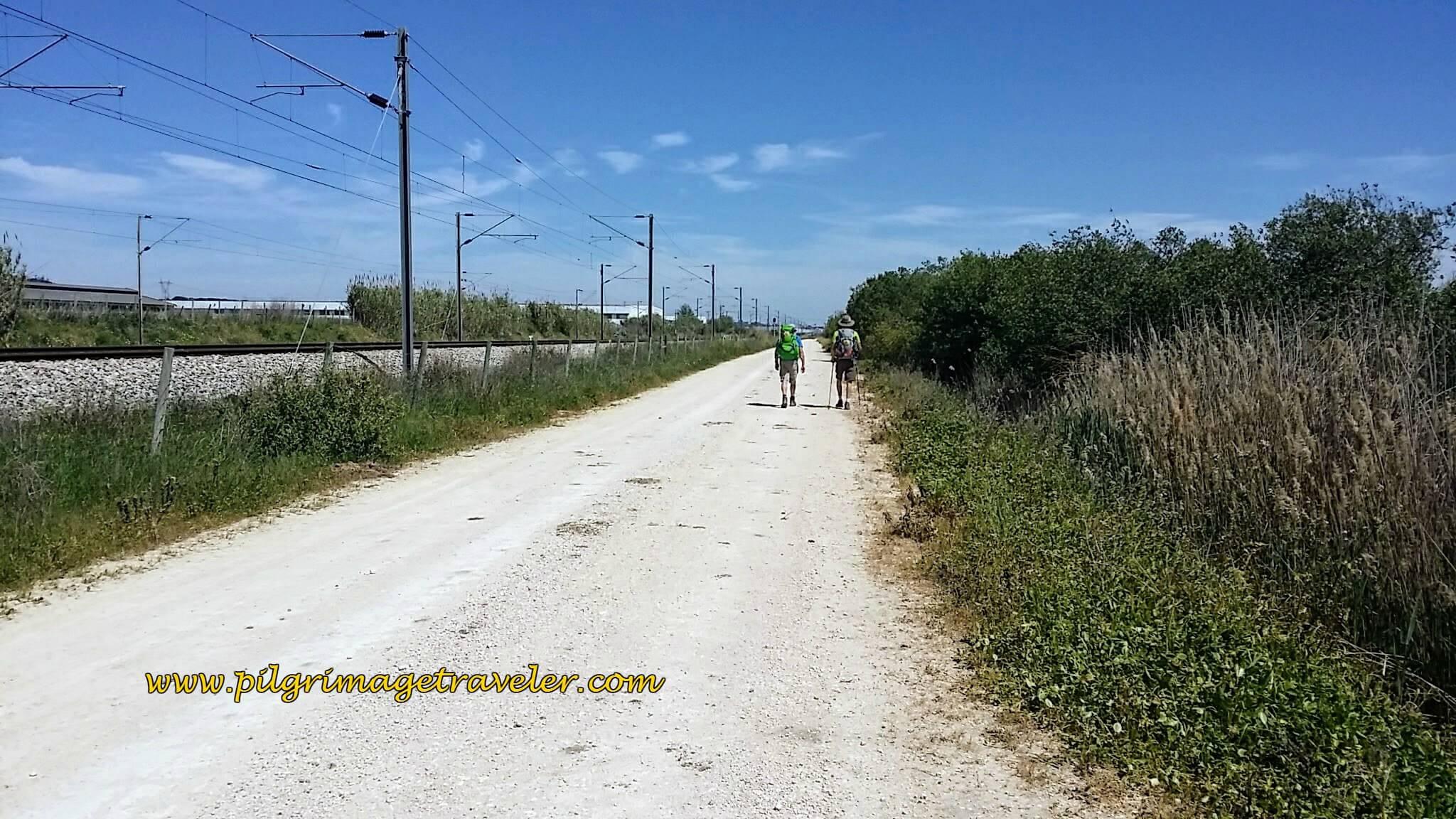Along the Railroad Tracks Towards Azambuja, Camino Portugués