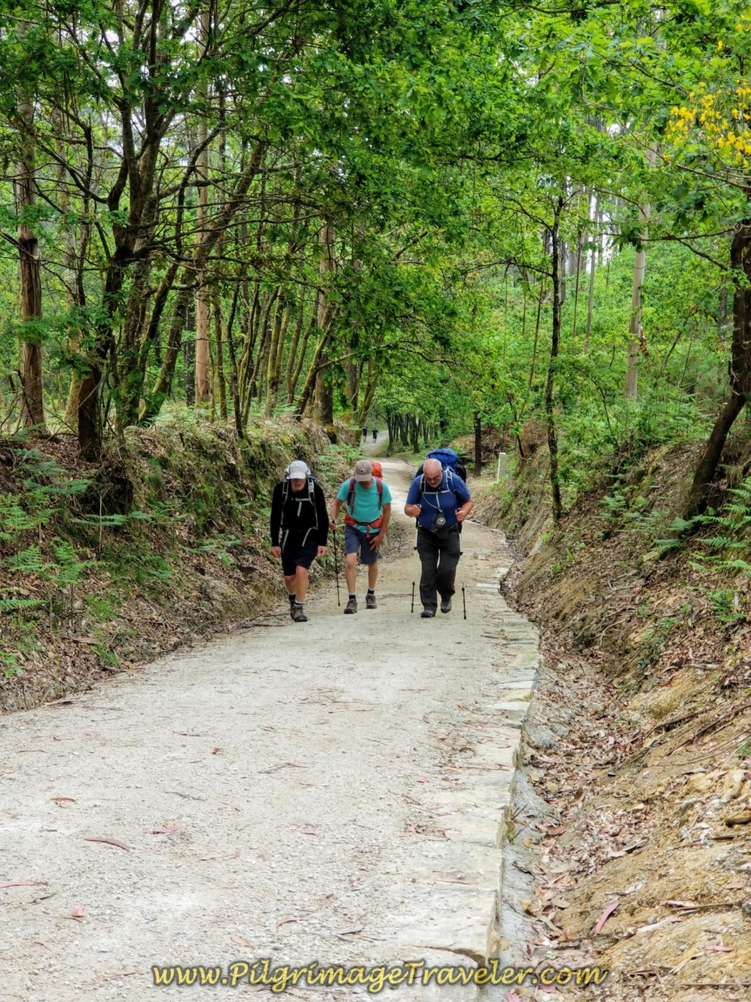 Gentlemen Climbing on Third Trail System of the Camino Fisterra on day one.