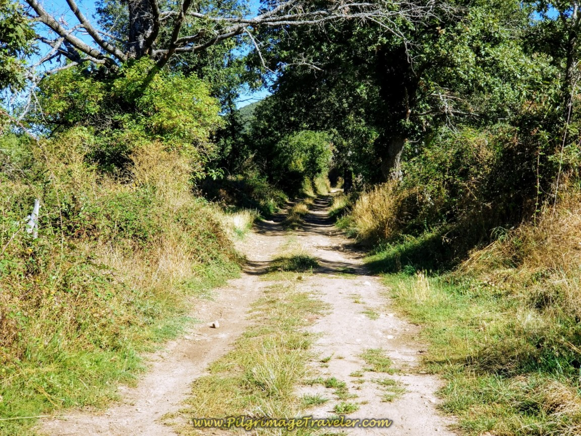 Northward Past Cabanillas