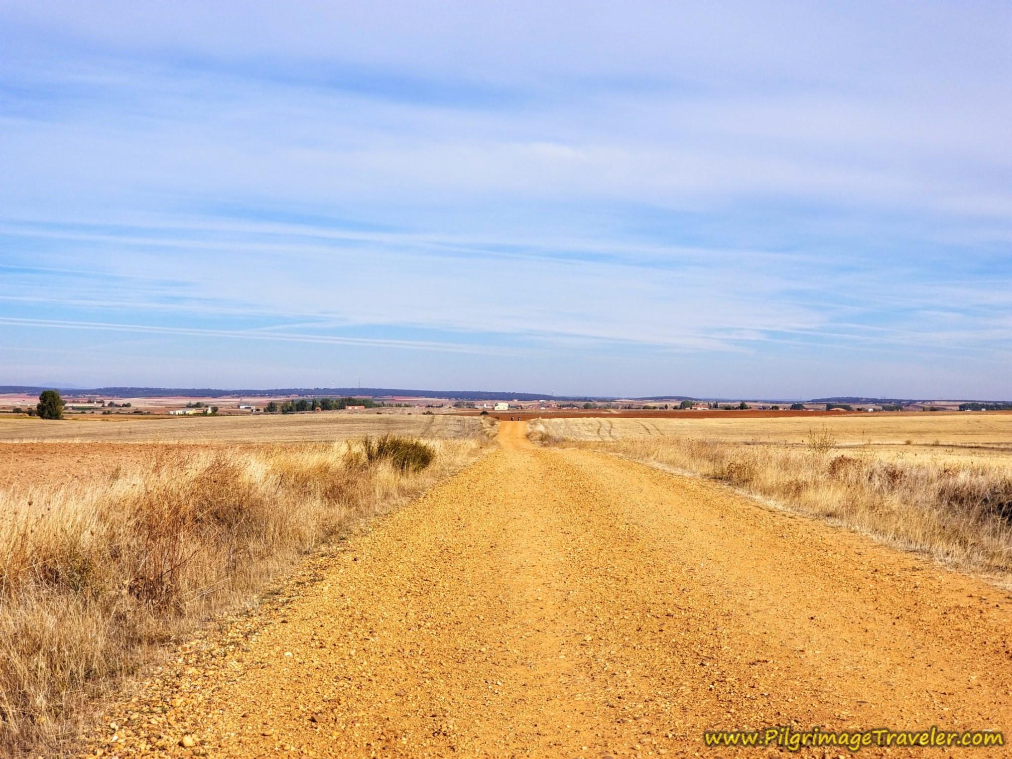 More Open Road on the Vía de la Plata from Zamora to Montamarta