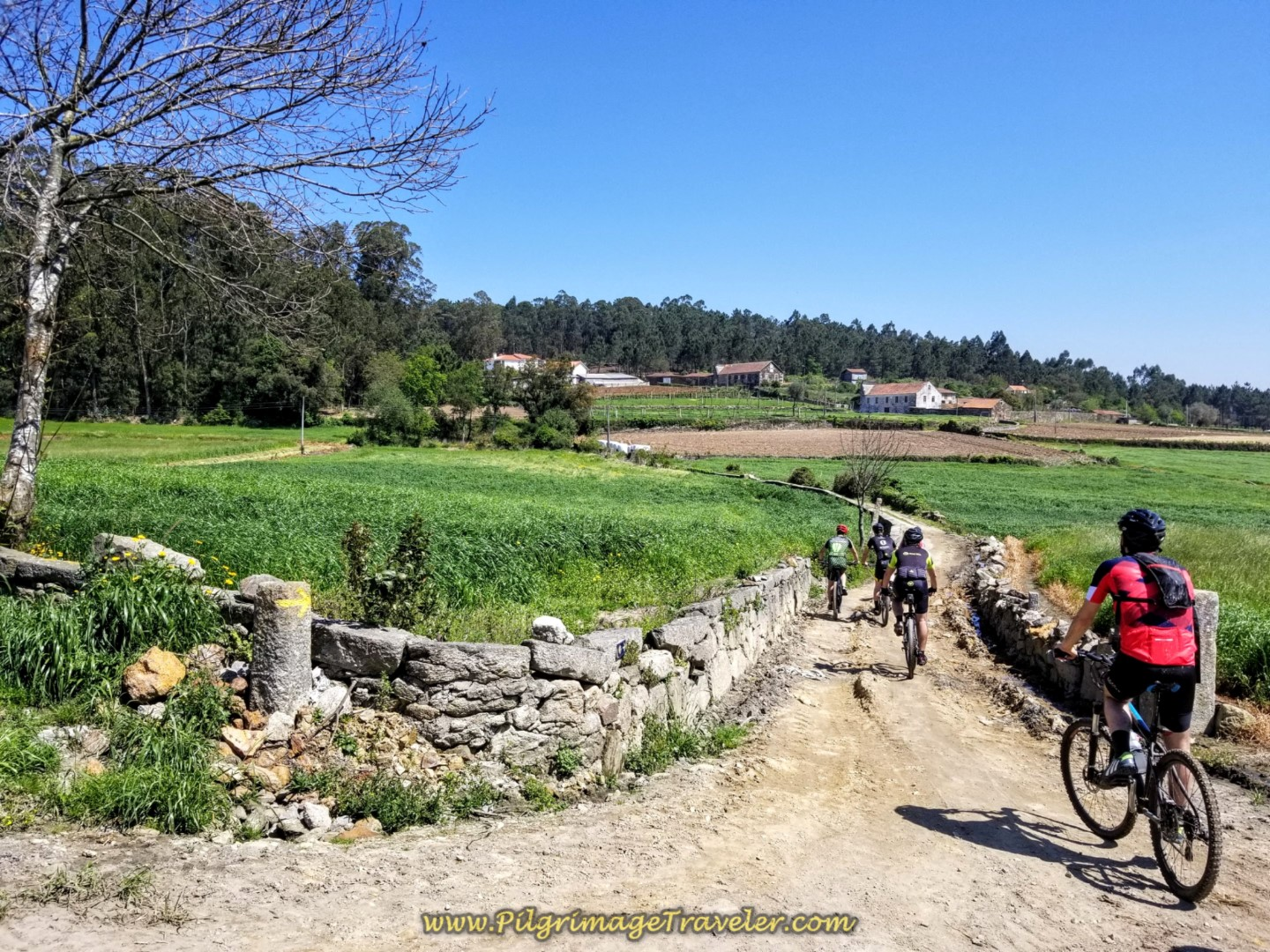 Bicycles Share the Rua Caminho de Santiago on day sixteen on the Central Route of the Portuguese Way