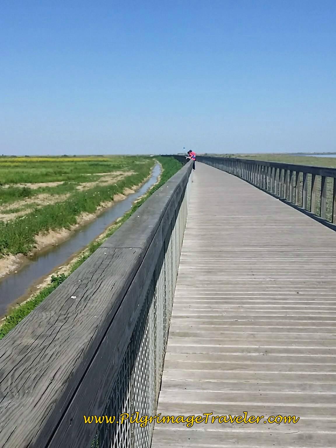 The Long Boardwalk along the Tagus, Alverca, Portugal
