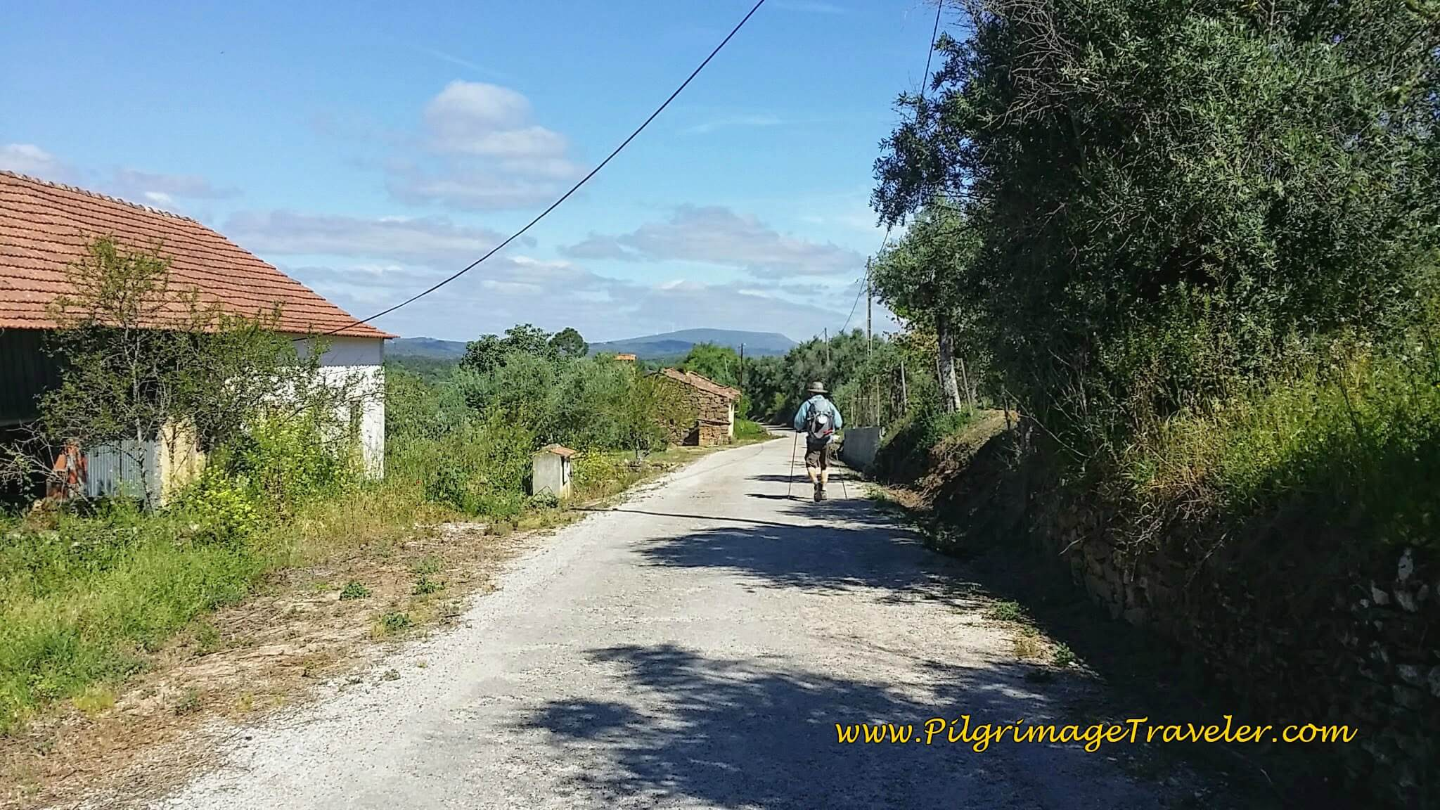 Unnamed Portuguese Country Road