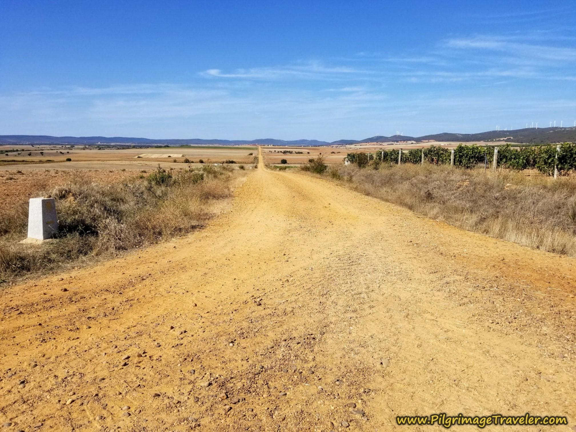 Long Road to Faramontanos de Tábara