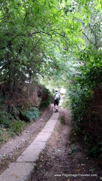 Paved Peregrino Footpath on Day Ten, Camino Primitivo