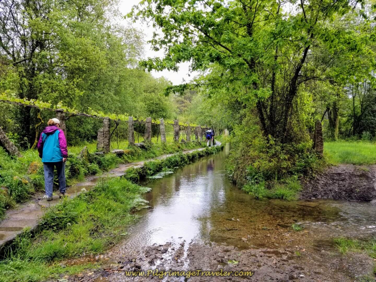 Glyvia on the Path that Follows a Canal on day twenty on the central route of the Portuguese Camino