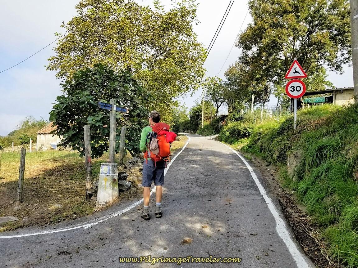 Bend Right Here in Pico de Lanza