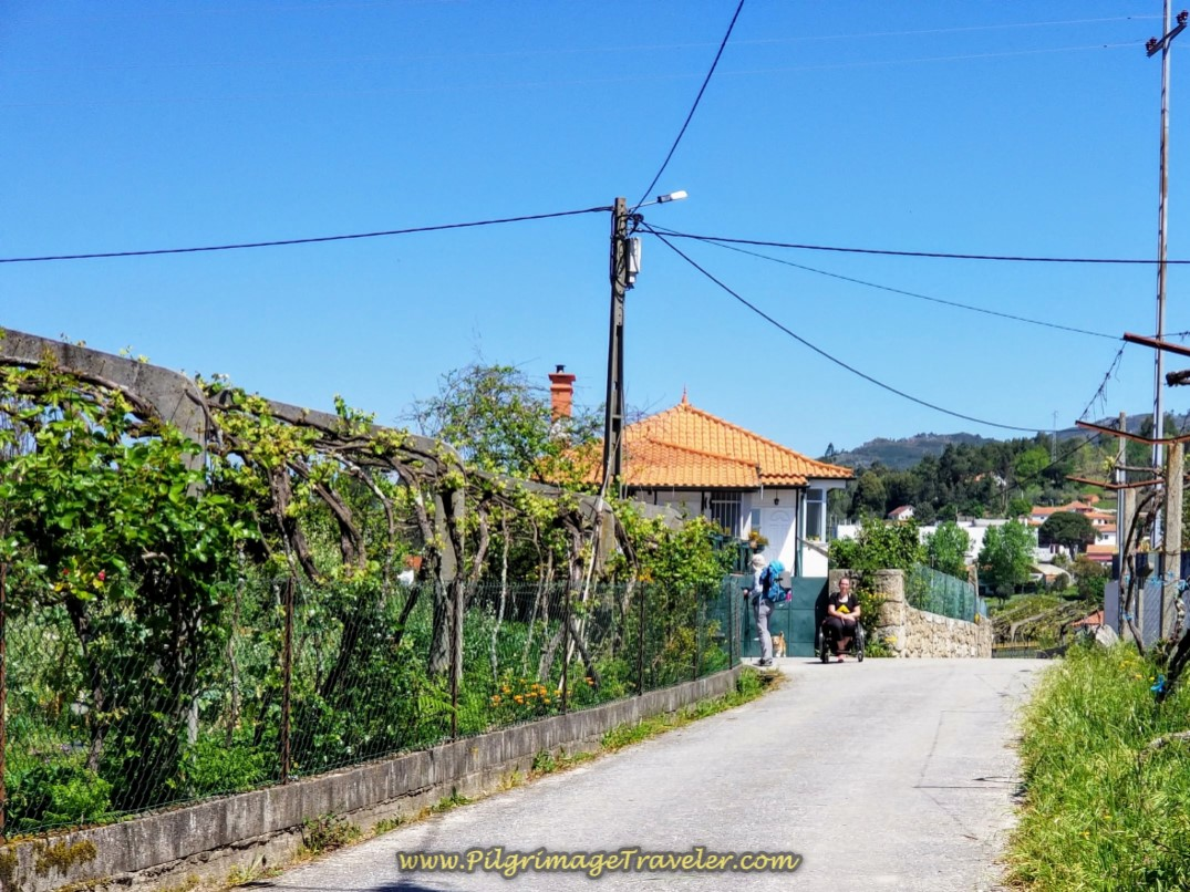 Magdalena Waiting by the Casa Fernanda in Lugar de Corgo on day seventeen on the Central Route of the Portuguese Camino