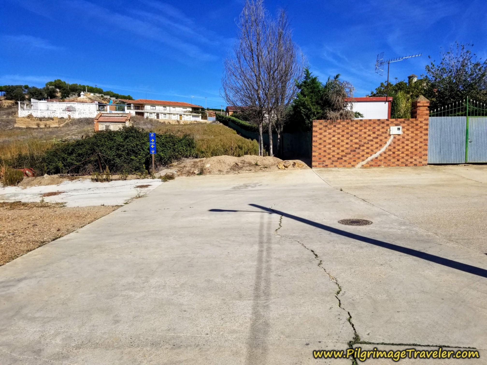 Bifurcation of Caminos