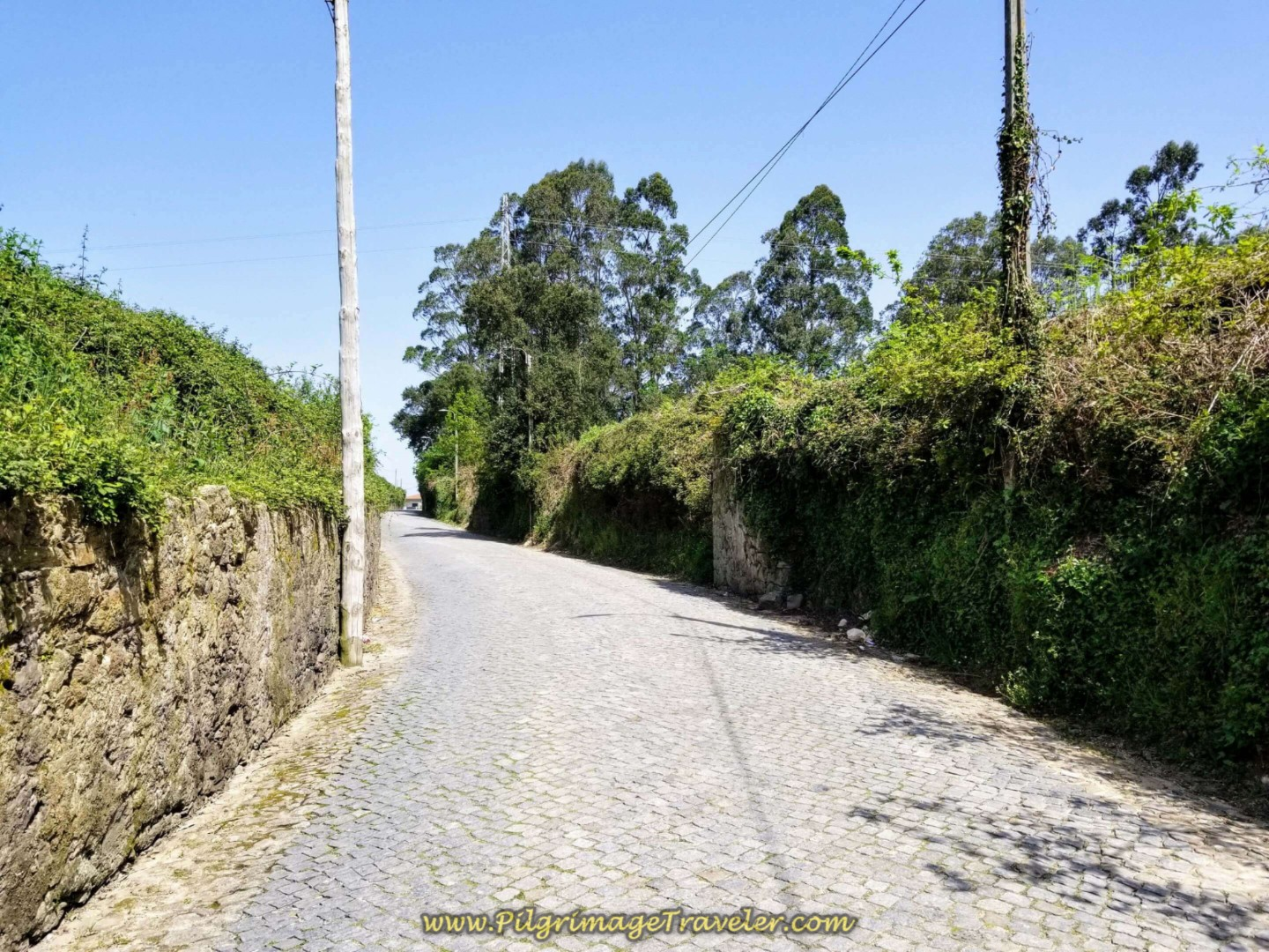Cobblestone Road to Vilar on day fifteen on the Central Route of the Portuguese Way