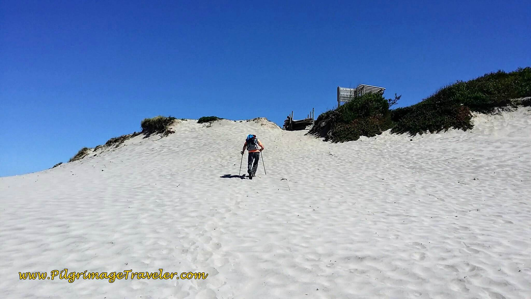 Hiking Up a Dune to the Next Boardwalk System on day eighteen of the Portuguese Way on the Senda Litoral