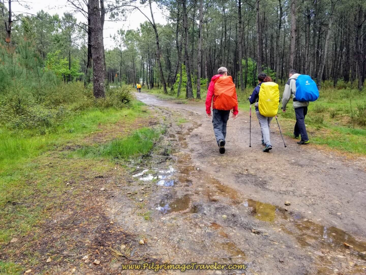 Rich, Miriam and Borut on day twenty on the central route of the Portuguese Camino