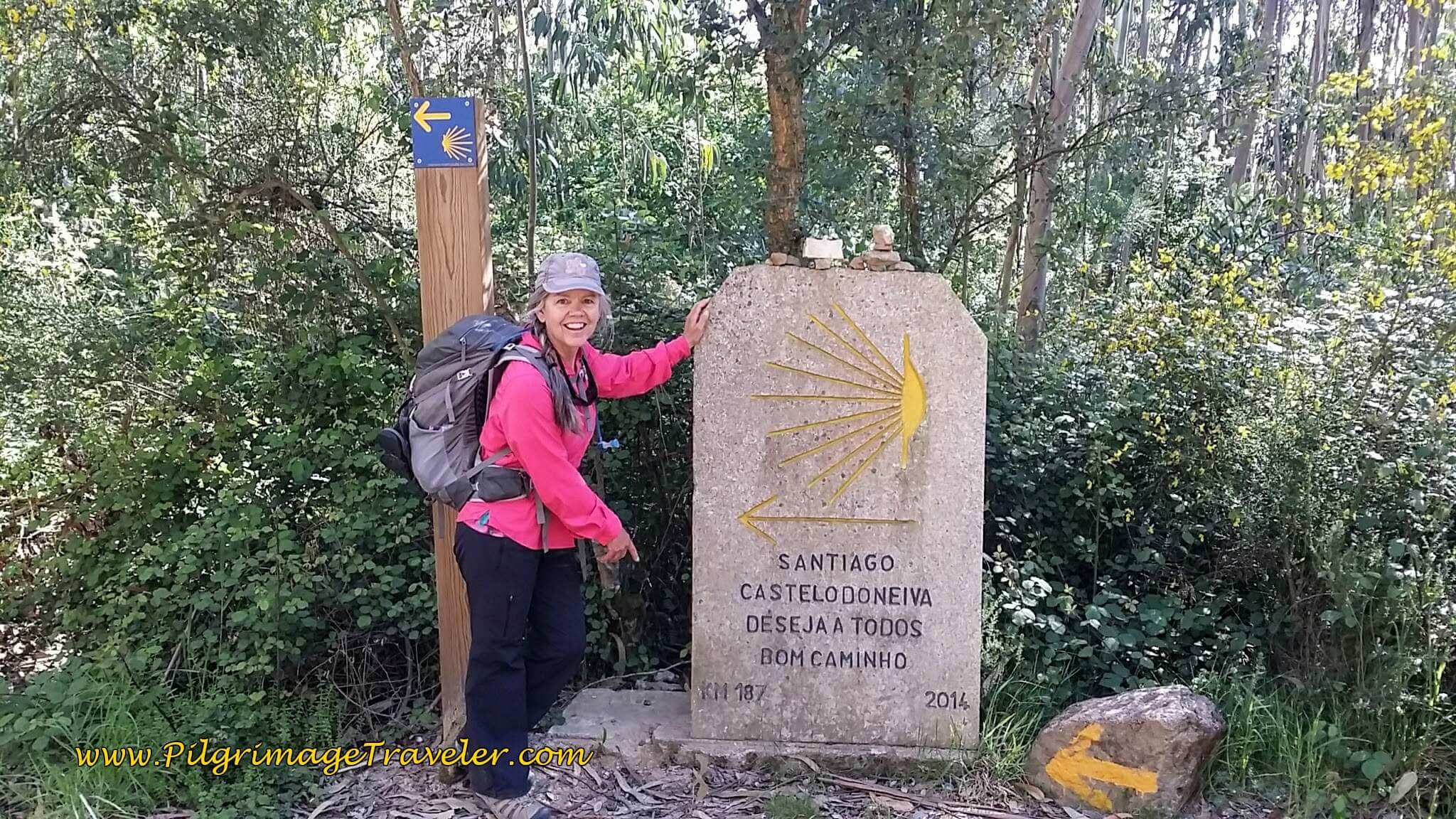 Elle at 187 Kilometer Mark on day Seventeen of the Camino Portugués