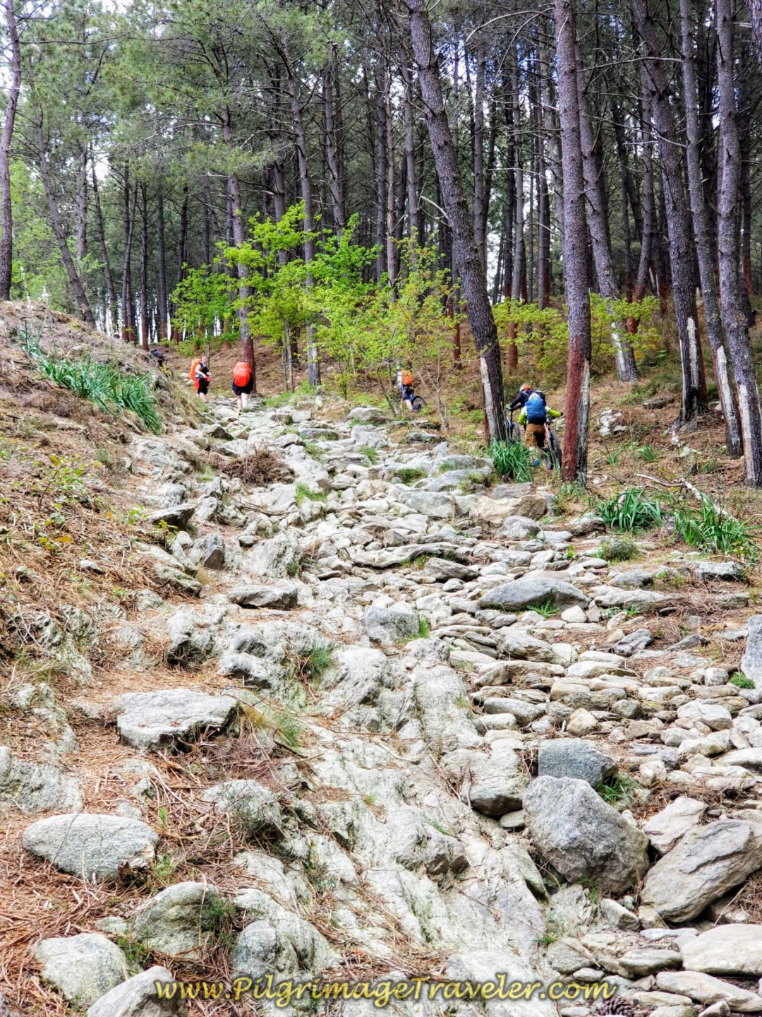 Last, Steep, Rocky Section toward the top of the Alto da Portela Grande de Labruja on day eighteen on the Central Route of the Portuguese Camino