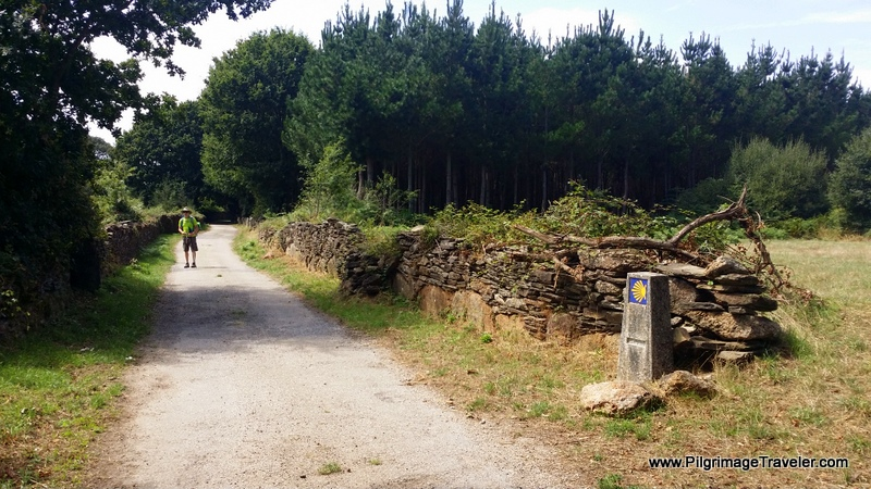 The Rural and Secluded Path Towards Lugo, Spain