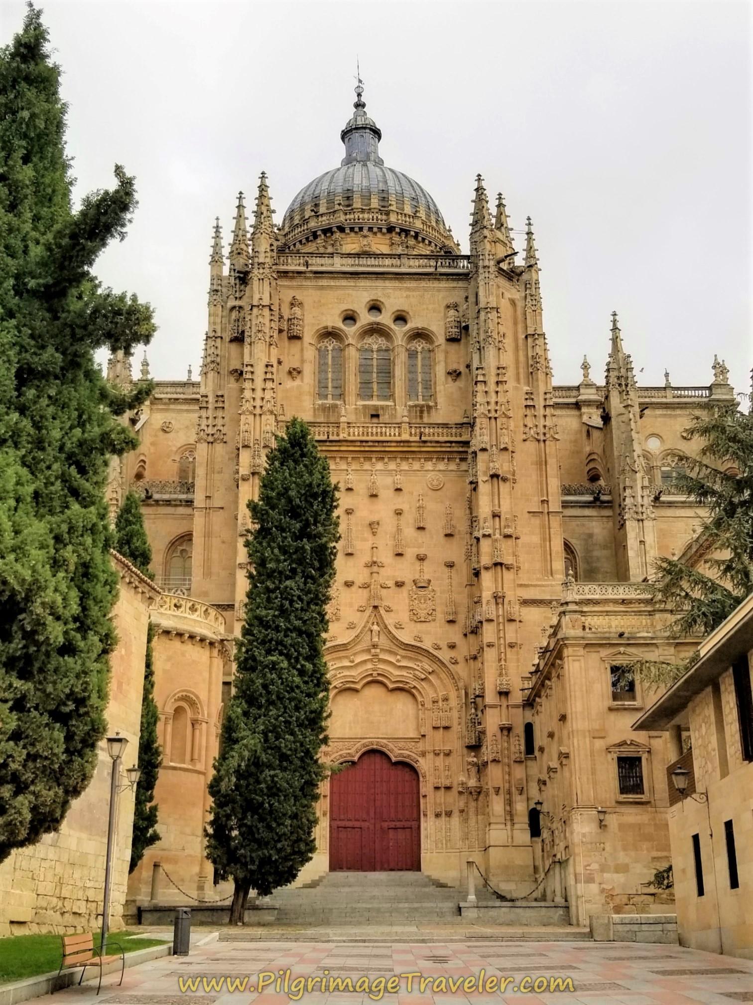 Salamanca Cathedral, Patio Chico Door