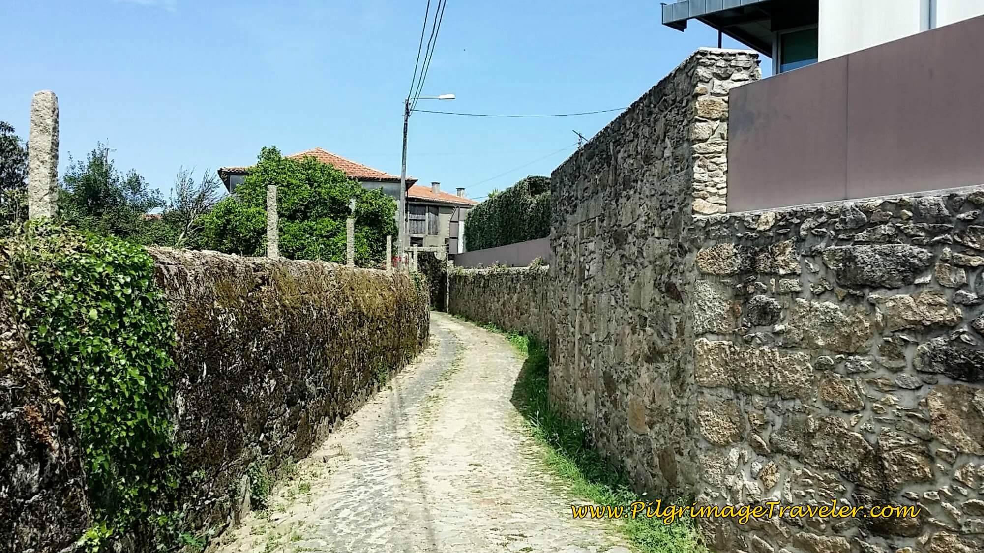 Turn Left on Interesting Rua da Sardoeira on day thirteen of the Camino Portugués