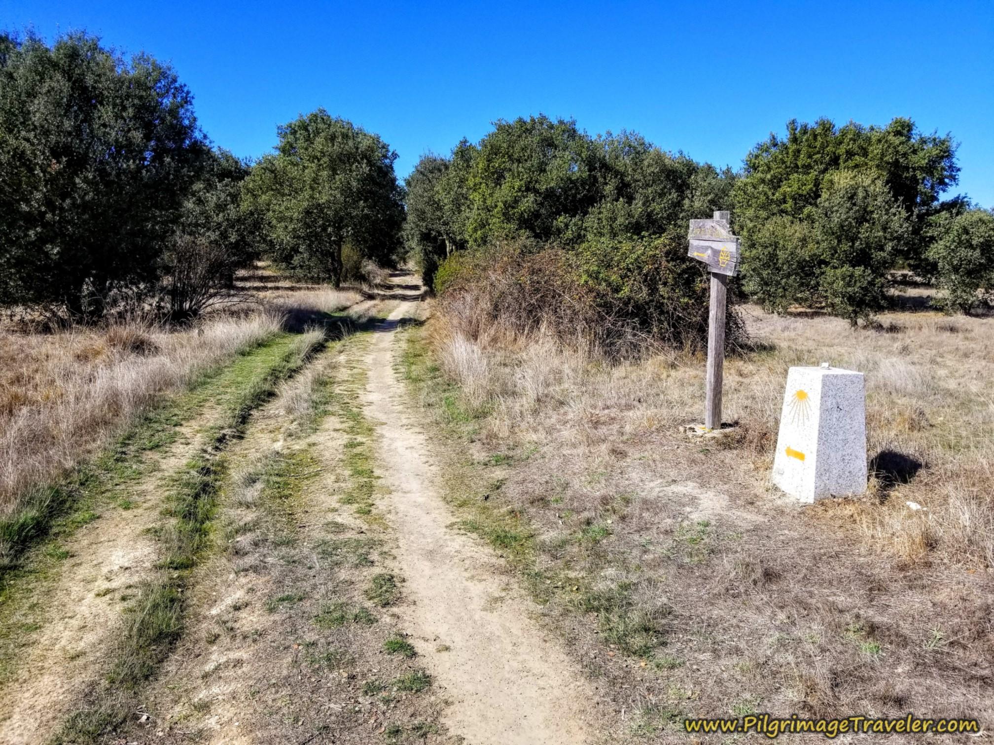 Country Lane Waymarking on the Camino Sanabrés from Santa Marta de Tera to Rionegro del Puente
