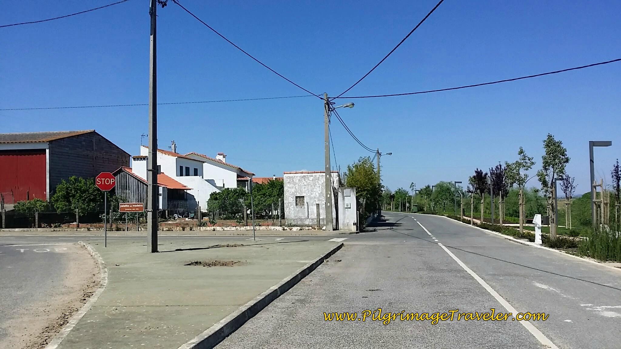 Entering Azinhaga, on the Portuguese Way
