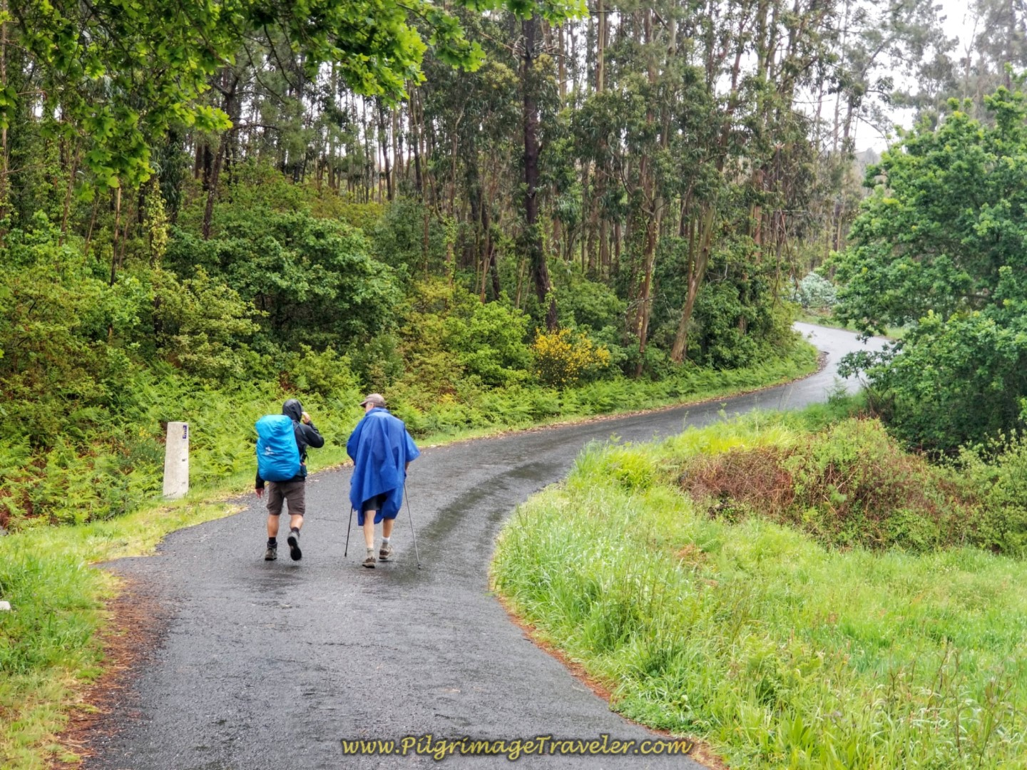 On the Long Paved Road to Morquintián on the Camino from Finisterre to Muxia