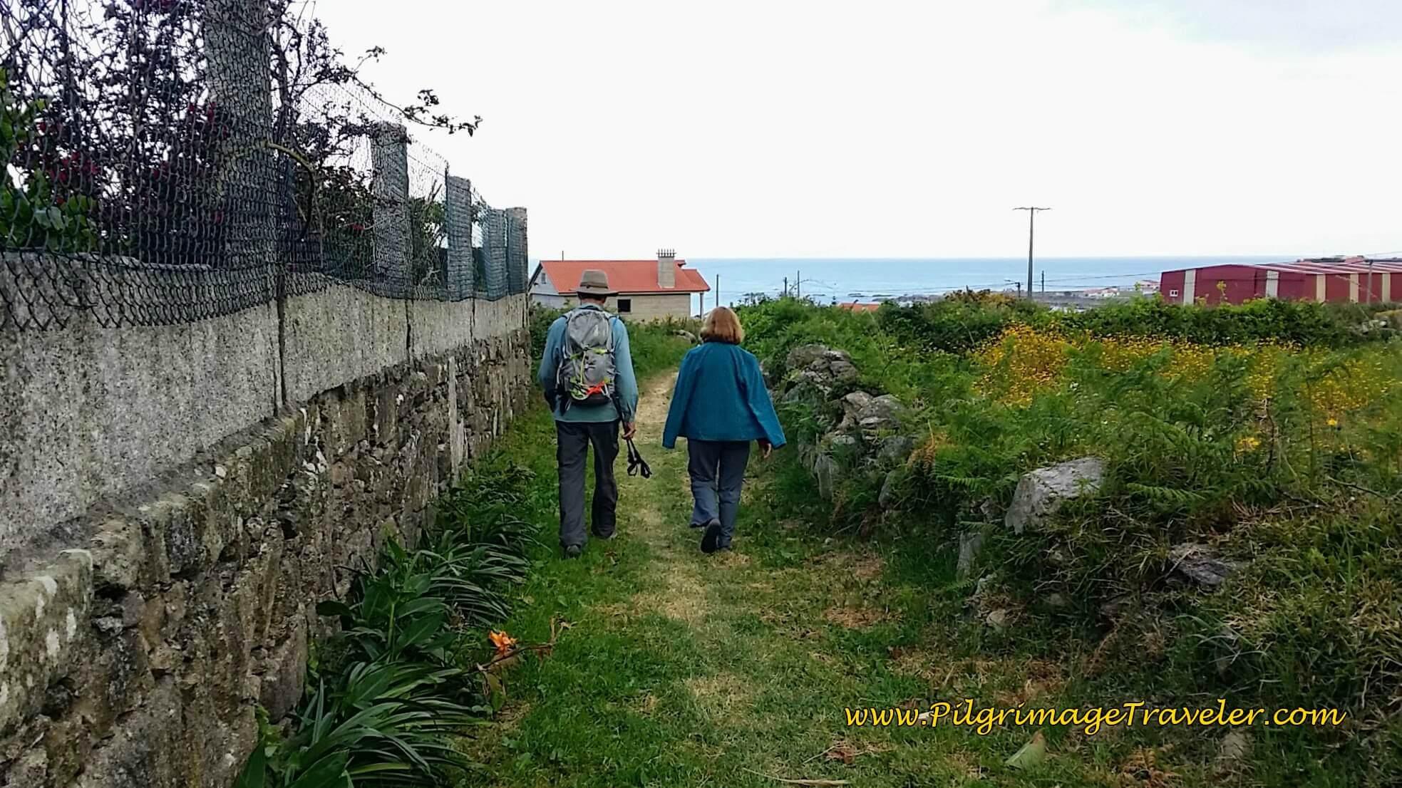 Shortcut to Lugar o Porto on day twenty, Camino Portugués