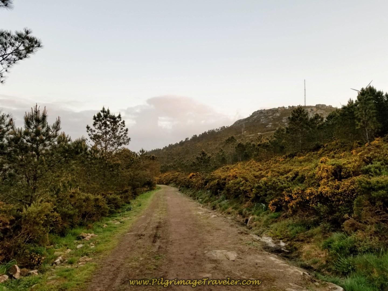 Camino Follows the Ridge Line