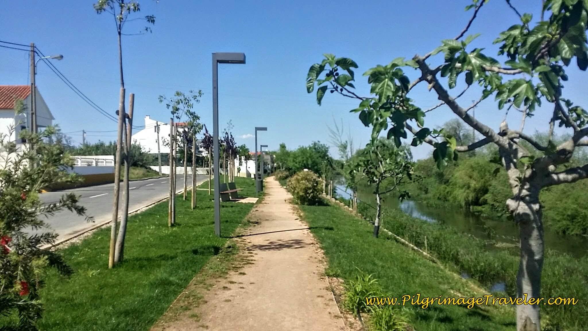 Path along the Rua Catarina Eufémia