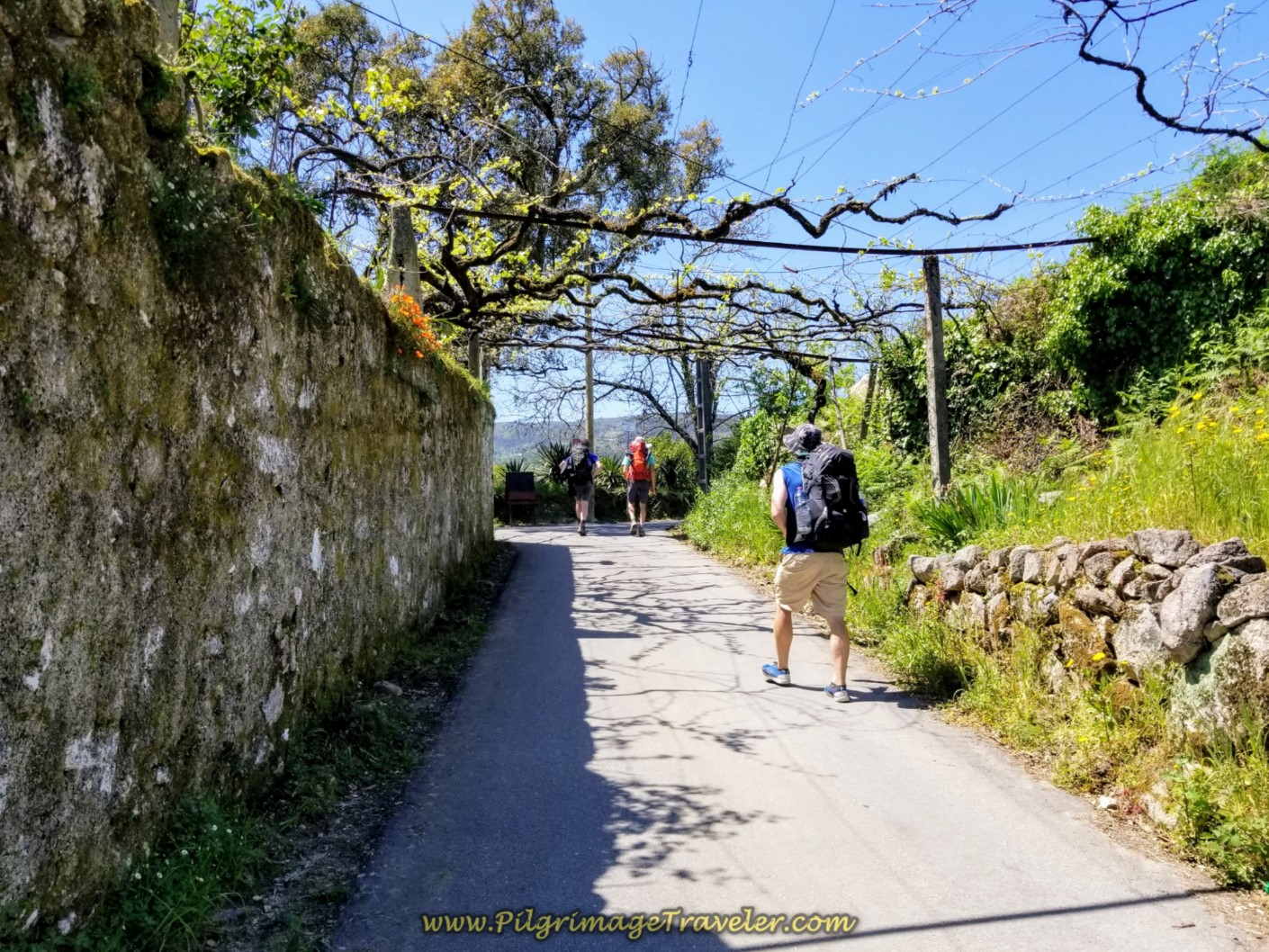 Walking Through the Town of Vitorino de Piães on day seventeen on the Central Route of the Portuguese Camino