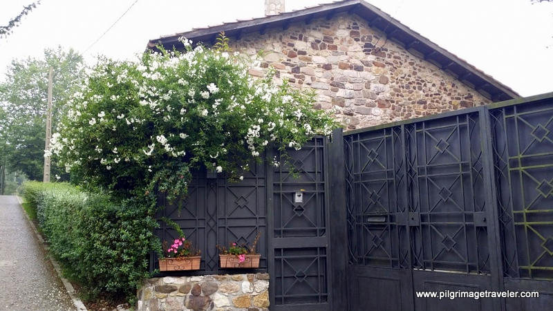 Lovely Lane and Homestead, Oviedo, Spain