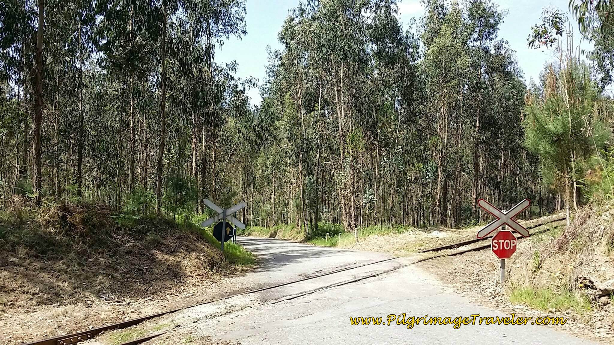 Crossing Railroad Tracks Again on day thirteen of the Camino Portugués