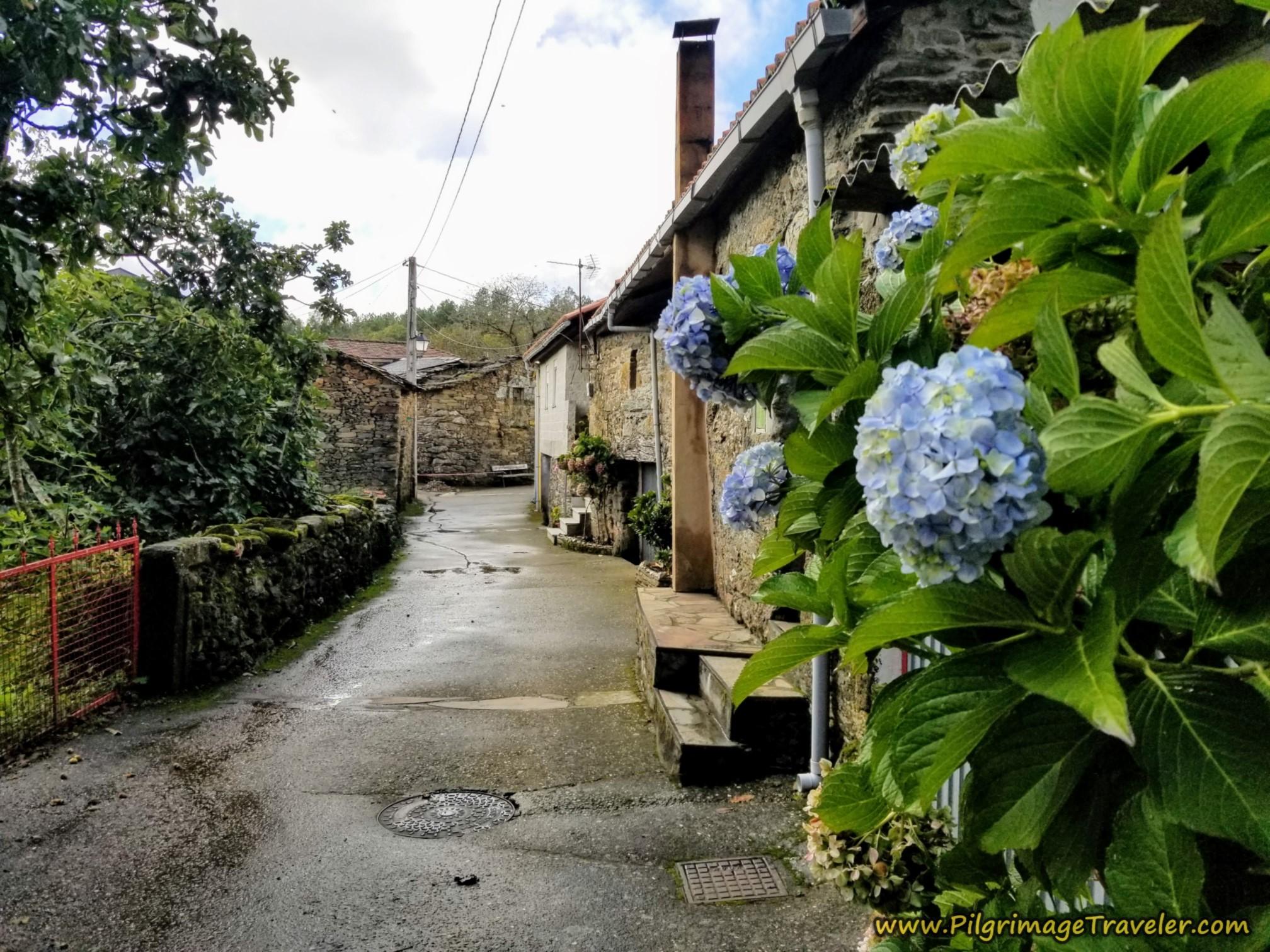 Entering As Eiras on the Camino Sanabrés from to A Venda da Capela to A Laza