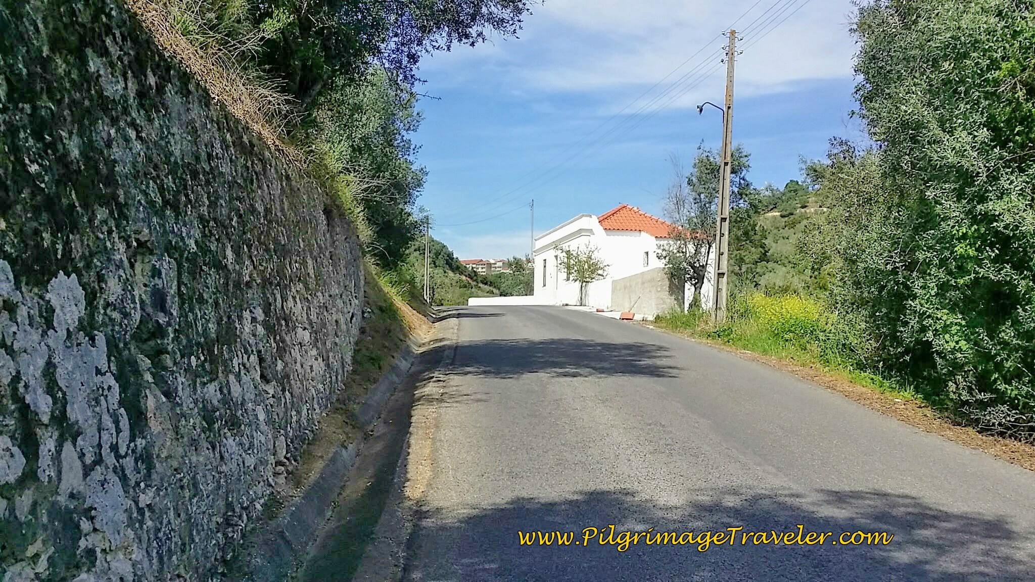 The Hill Climb to Santarém Begins on the Portuguese Way