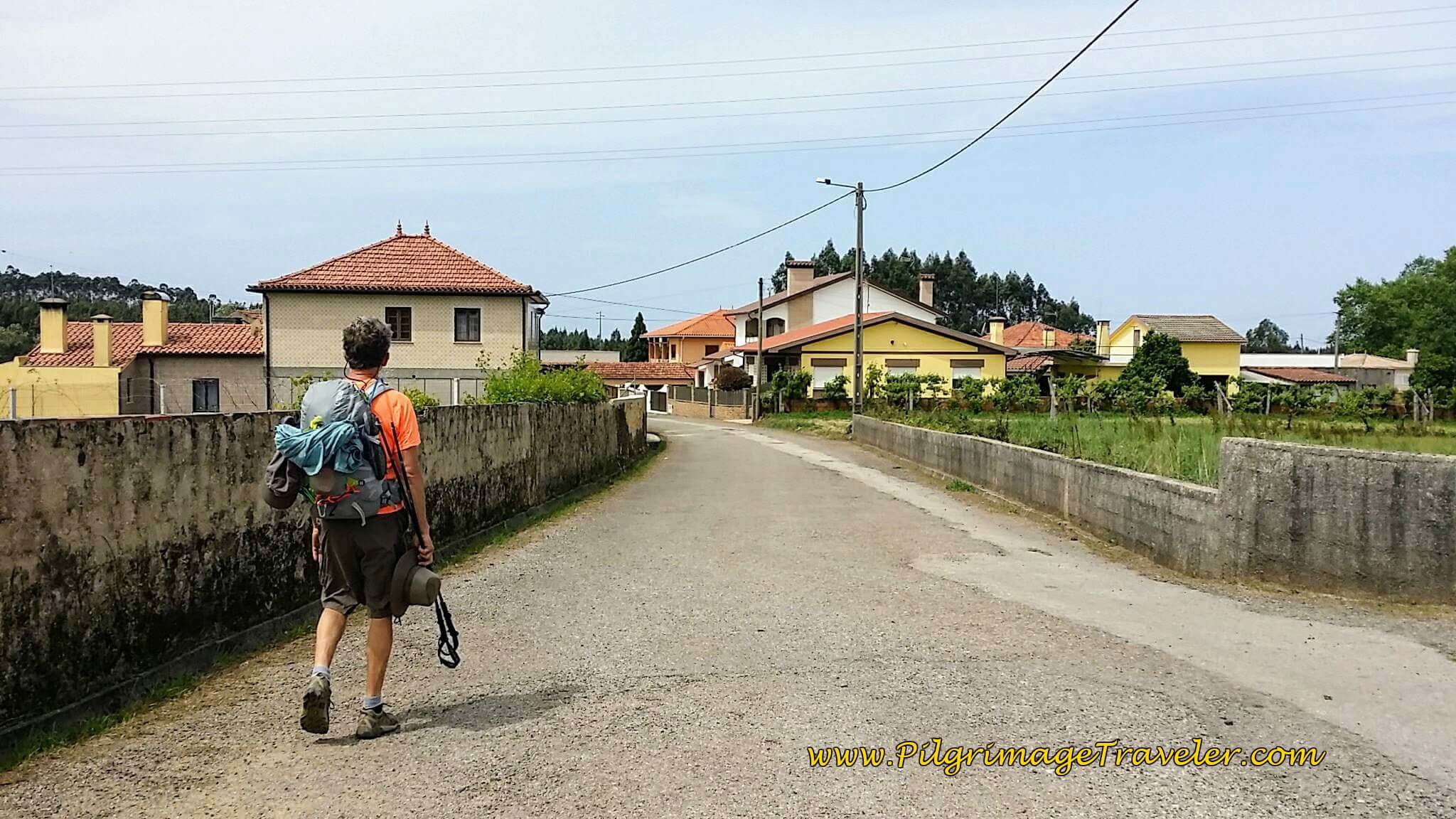Approaching Albergaria-a-Nova on day twelve of the Camino Portugués